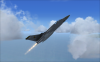 fsx_2009-08-03_10-04-22-78.png